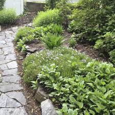 Backyard Makeover Ideas On A Budget 50 Front Yard Landscaping Ideas With Gallery Decoration Y