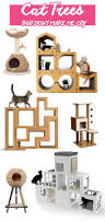 Unique Cat Furniture Get 20 Modern Cat Supplies Ideas On Pinterest Without Signing Up