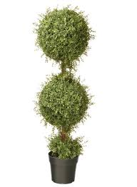 Topiaries Plants - national tree 48 inch mini tea leaf double ball topiary plant in