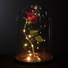 rose in glass amazon com life sized 13 enchanted rose that lasts forever in