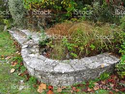 image of neglected concrete raised garden pond overgrown weeds
