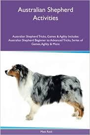 australian shepherd iphone 4 case australian shepherd activities australian shepherd tricks games