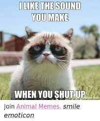 Memes Animals - 25 best memes about i like the sound you make when you shut up