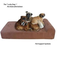 Memory Foam Dog Bed Lucky Dog Gel Memory Foam Dog Bed Certi Pur Dog Bed Made In Usa
