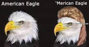 Patriotic Eagle Meme - celebrate merica this president s day thechive