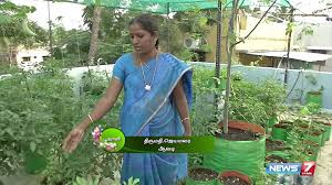 rooftop vegetable gardening guide poovali news7 tamil youtube