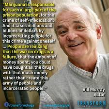 Injecting Marijuanas Meme - bill murray marijuana quote from reddit wonderful world of weed