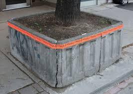 karen abel u0027s installation for u0027outside the planter boxes