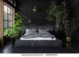 plants that grow in dark rooms wide bed dark room black walls stock illustration 658287943