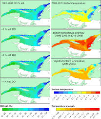 marine species in ambient low oxygen regions subject to double