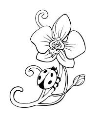 ladybug coloring pages flower coloringstar