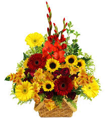 Flowers Bristol Tn - johnson city florist johnson city tn flower delivery avas
