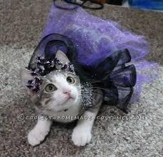 princess luna cat costume princess luna costume contest and