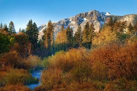 catching peak fall foliage sierra nevada u2013 lake