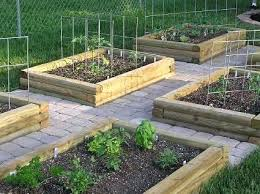 Vegetable Garden Layout Guide Veggie Garden Layout Vegetable Garden Layout Vegetable Garden