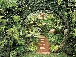 Small Tropical Garden Ideas Tropical Garden Designs For Small Gardens Garden Design