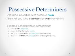 possessive pronouns u0026 determiners flipped classroom lesson ppt