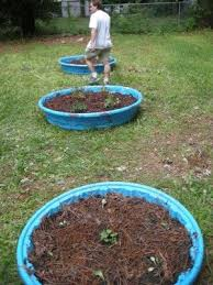raised bed gardening using kiddie pools it works great you can