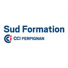chambre de commerce formation sud formation cci pyrénées orientales formation professionnelle