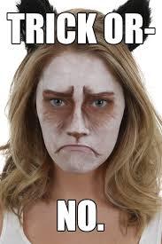 Grumpy Face Meme - grumpy cat makeup tutorial halloween costumes blog