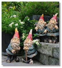 273 best gnome sweet gnome images on gnome garden