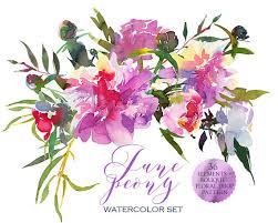 floral bouquets watercolor pink peonies clipart floral bouquets elements