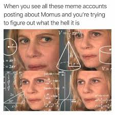 What The Hell Is A Meme - dopl3r com memes when you see all these meme accounts posting