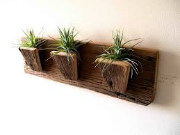wall mounted plant holder best 25 plant crafts ideas on