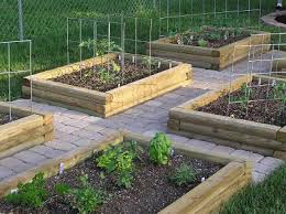 backyard vegetable garden design plans home and dining room