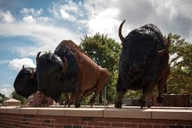 35 Best Sculptures Images On Bison Sculptures Installed At Kickapoo And Macarthur Oklahoma