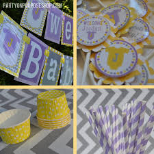 baby shower party decorations purple yellow gray fully
