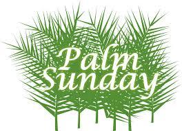 palm branches for palm sunday palm sunday news photos wvphotos