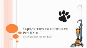 Best Vacuum For Dog Hair On Hardwood Floors 5 Quick Tips To Eliminate Pet Hair Best Vacuums For Pet Hair Youtube