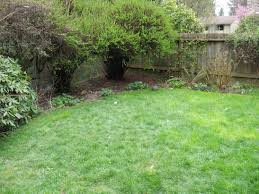 backyard garden suburban champsbahrain com