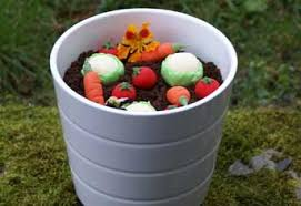 Challenge Plant Pot Edible Flower Pots Not A Challenge For Our Chefs