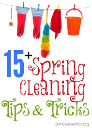 Spring Cleaning Hacks 117 Best Spring Clean Challenge Images On Pinterest Cleaning