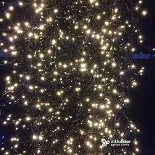 lumineo led twinkle cluster lights warm white 2040 lights