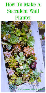 How To Make A Succulent Planter by Diy Hanging Succulent Planter My Uncommon Slice Of Suburbia
