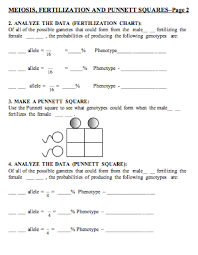 chapter 10 mendel and meiosis worksheet answers worksheets