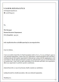amazing cover letter example best letter sample
