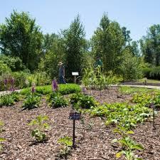 Michigan Botanical Gardens Medicinal Garden Opens At U M Matthaei Botanical Gardens Um