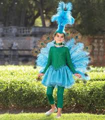 Peacock Costume Halloween 64 Peacock Costume Images Peacock Costume