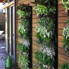 Apartment Patio Garden Ideas Sweet Best Apartment Balcony Garden Gallery Home Design Ideas As