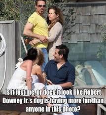 Robert Downey Jr Meme - robert downey jr