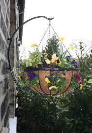 what plants to put in hanging baskets garden features ideas