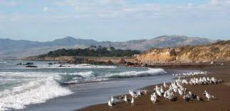 Moonstone Cottages Cambria Ca by Cambria Ca Hotel On Moonstone Beach White Water Inn