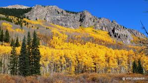Foliage Map Tips To See Fall Foliage In Colorado