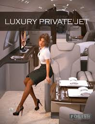luxury private jet 3d models and 3d software by daz 3d