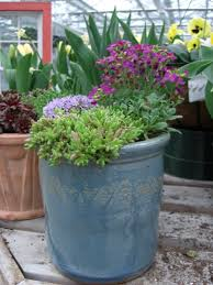 garden design garden design with container planting and some