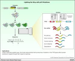 a massively parallel fluorescence assay to characterize the download figure